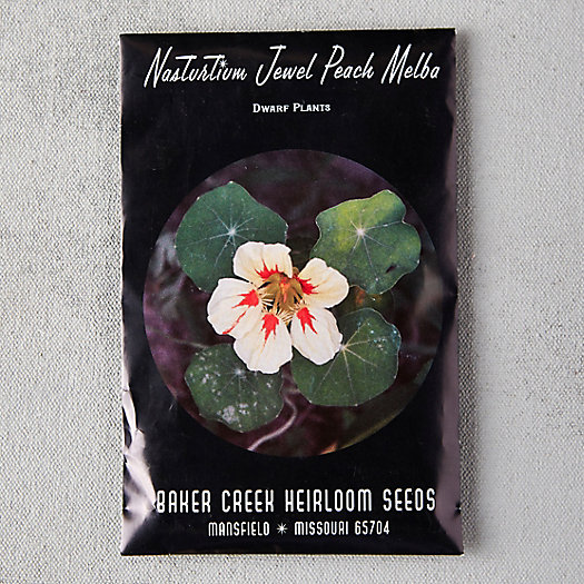 View larger image of Jewel Peach Melba Nasturtium Seeds