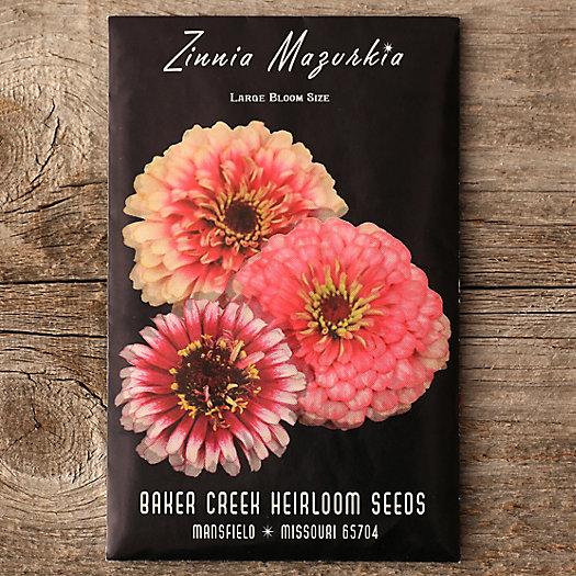 View larger image of Mazurkia Zinnia Seeds