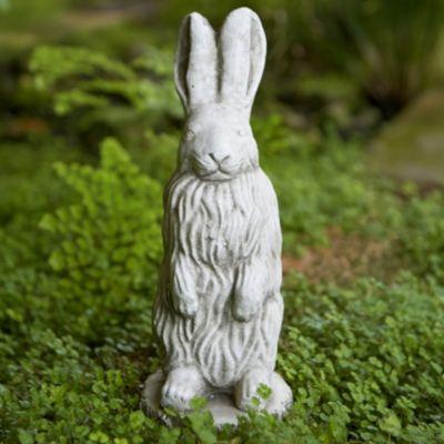 Rock Garden Hare