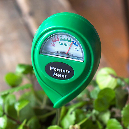 View larger image of Moisture Meter