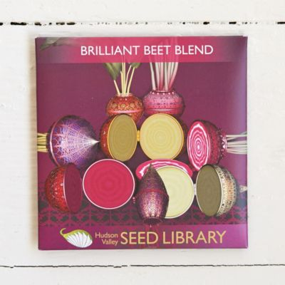 Brilliant Beet Blend Seeds
