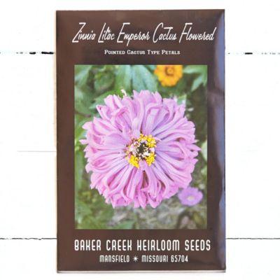 'Lilac Emperor' Zinnia Seeds