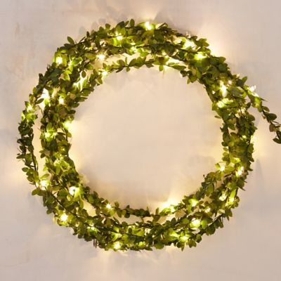 Stargazer Boxwood Lights, 15'
