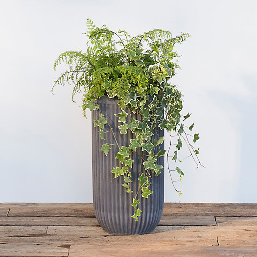 View larger image of Fiber Concrete Tall Barrel Pot