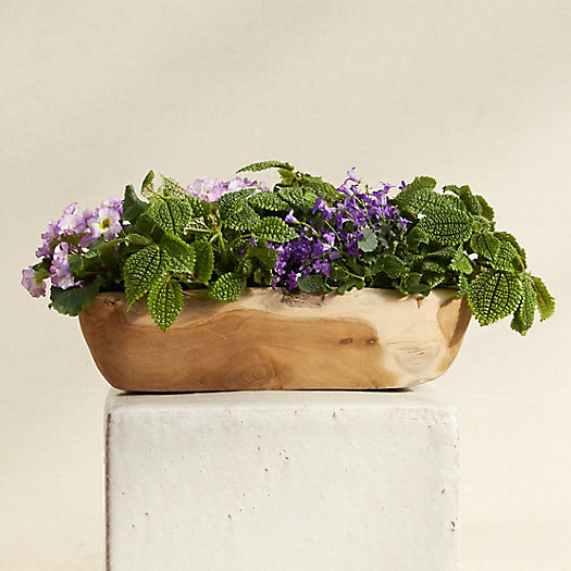 View larger image of Carved Teak Oval Planter