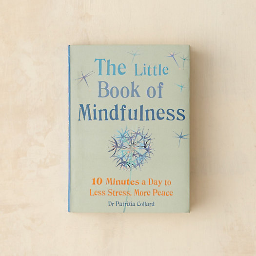 View larger image of The Little Book of Mindfulness