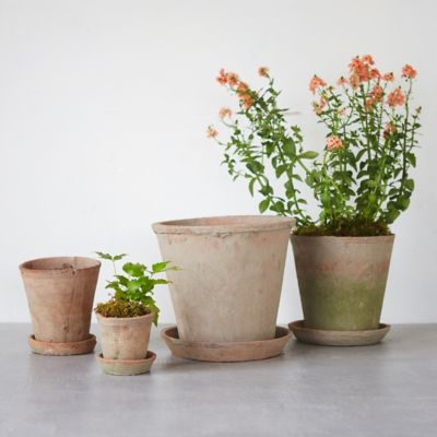 Earth Fired Clay Herb Pot