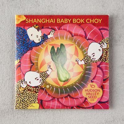 Shanghai Baby Bok Choy Seeds