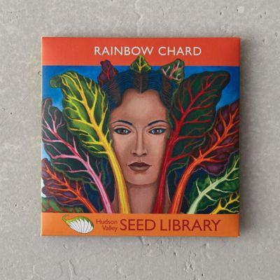 Rainbow Chard Seeds