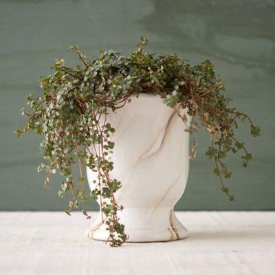 Marbled Ceramic Urn