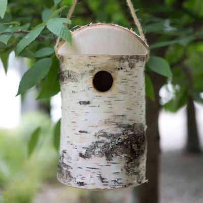 Hewn Birch Birdhouse, Small
