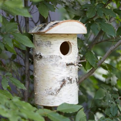 Hewn Birch Birdhouse, Large