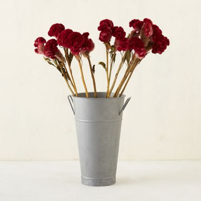 Dried Celosia Bunch