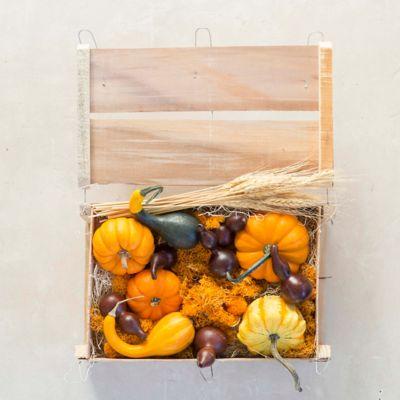 Fall Foliage Pumpkin & Gourd Crate