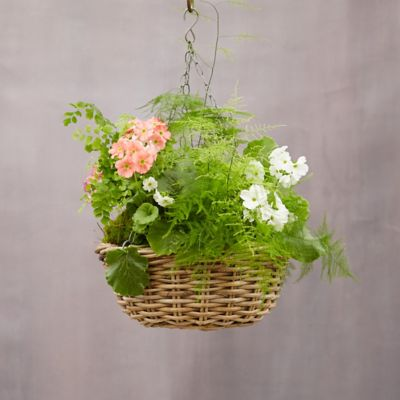 Rattan Circle Hanging Basket