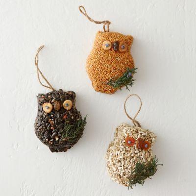 Birdseed Owl Trio