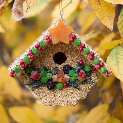 Edible Seed Birdhouse