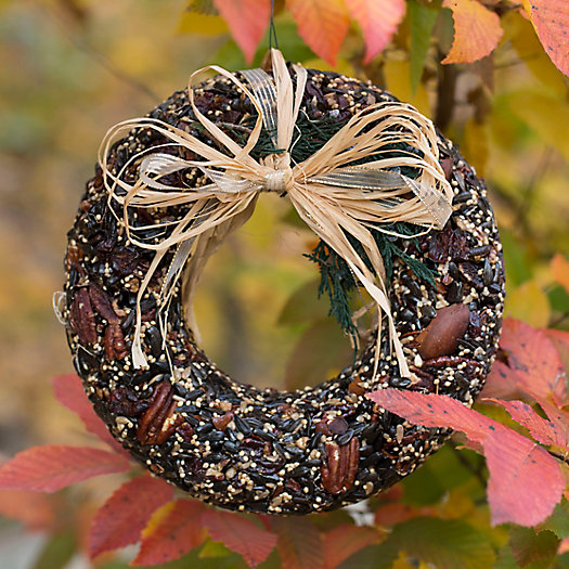 View larger image of Edible Seed & Pecan Wreath