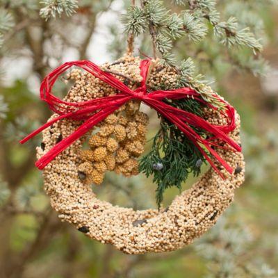 Edible Seed Wreath, Large