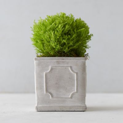 Tiny Cube Cement Planter