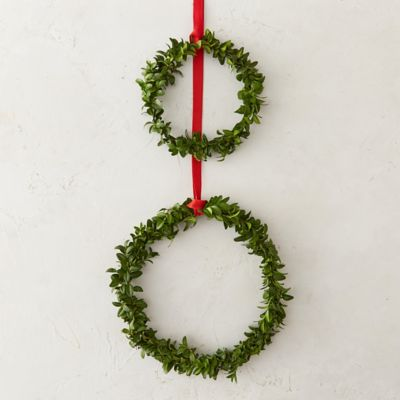 Fresh Boxwood Circlet