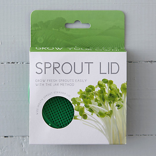 View larger image of Alfalfa Sprout Mason Jar Strainer Lid
