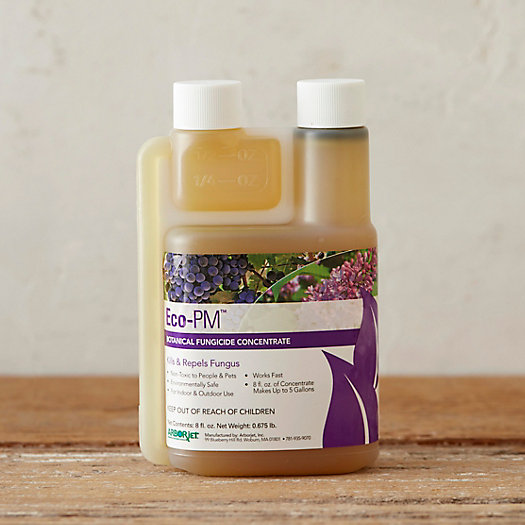View larger image of Eco-PM Organic Fungicide Concentrate