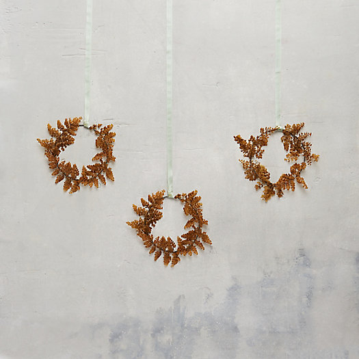View larger image of Preserved Fern Circlet Trio, Adiantum