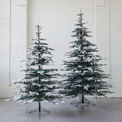 Snowy Faux Noble Fir
