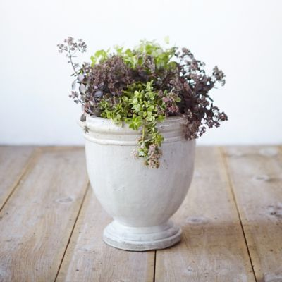 Provencal Urn Planter
