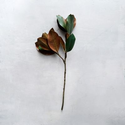 Faux Magnolia Leaf Stem