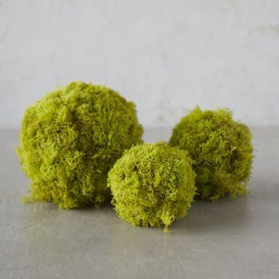 Preserved Reindeer Moss Spheres, Set of 3
