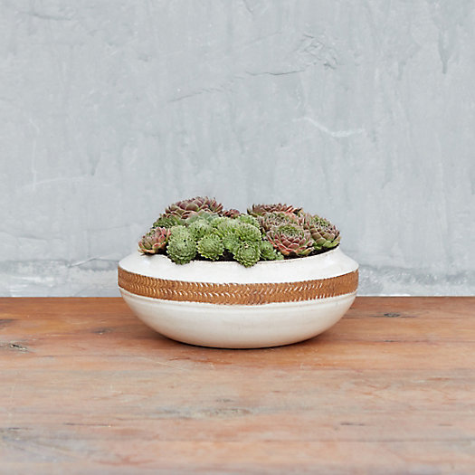View larger image of Earthenware Band Bowl
