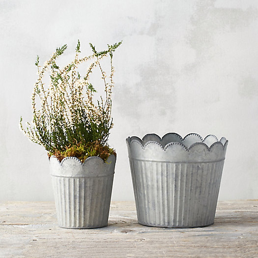 View larger image of Scalloped Stripe Pot