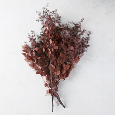 Preserved Burgundy Seeded Eucalyptus Bunch