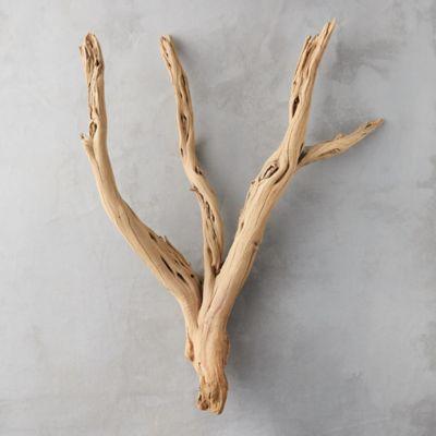 Ghostwood Log
