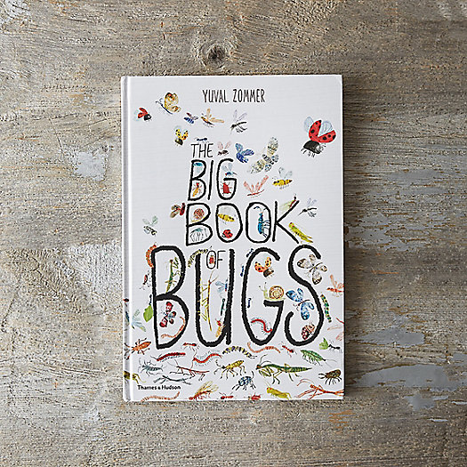 View larger image of The Big Book of Bugs