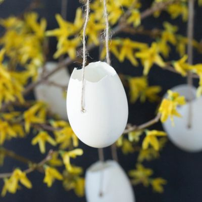 Hanging Goose Egg Planters, Set of 4