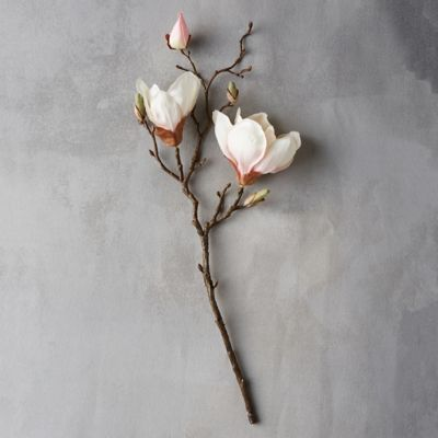 "19"" Faux Magnolia Branch, Cream"