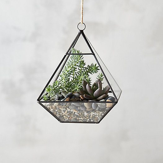 View larger image of Framed Pyramid Hanging Terrarium