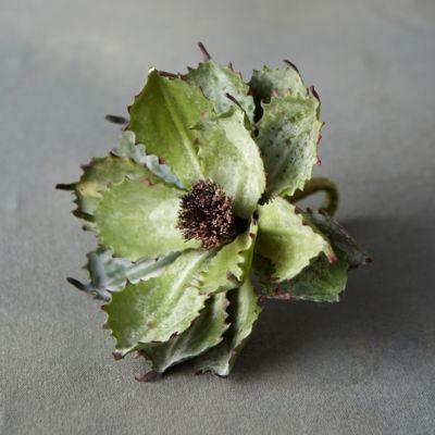Faux Spiky Succulent