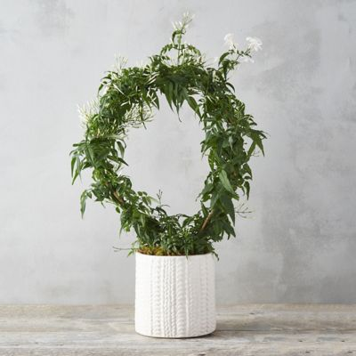 Jasmine Hoop, Sweater Pot