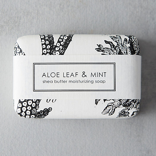View larger image of Aloe Leaf & Mint Soap