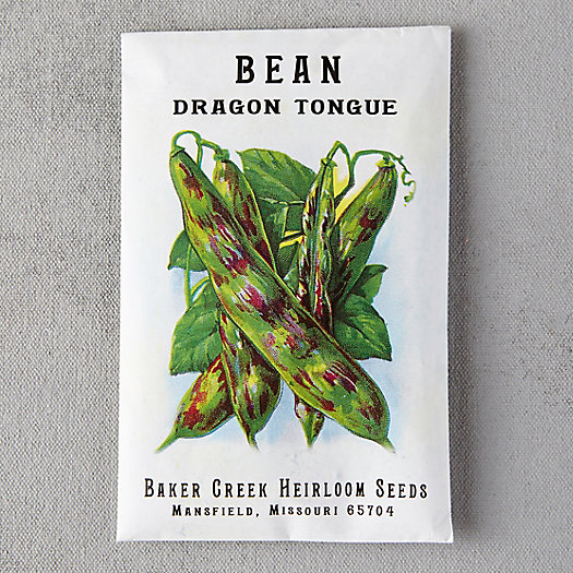 View larger image of Dragon Tongue Bush Bean Seeds