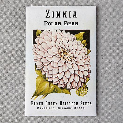 View larger image of Polar Bear Zinnia Seeds
