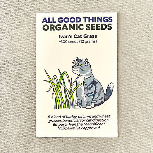 View larger image of Ivan's Cat Grass Seeds