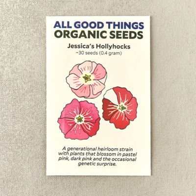 Jessica's Hollyhock Flower Seeds