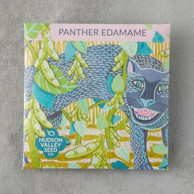 Panther Edamame Seeds