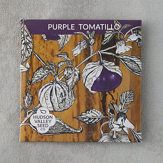 View larger image of Purple Tomatillo Seeds