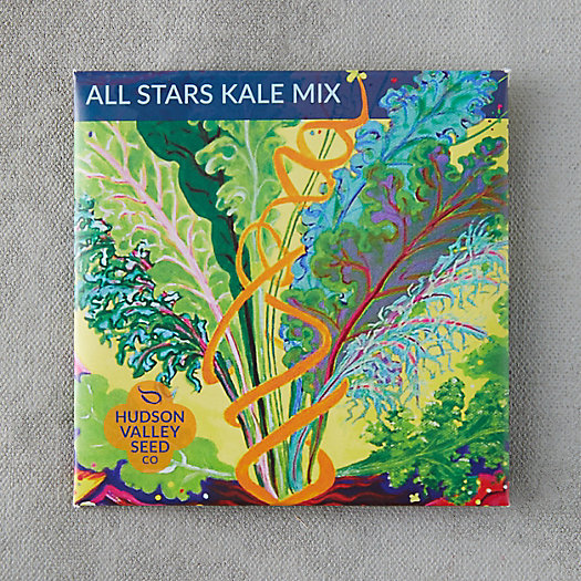 View larger image of All Stars Kale Mix Seeds